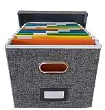 File Box file Organizer...