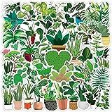 50 Pieces of Garden...