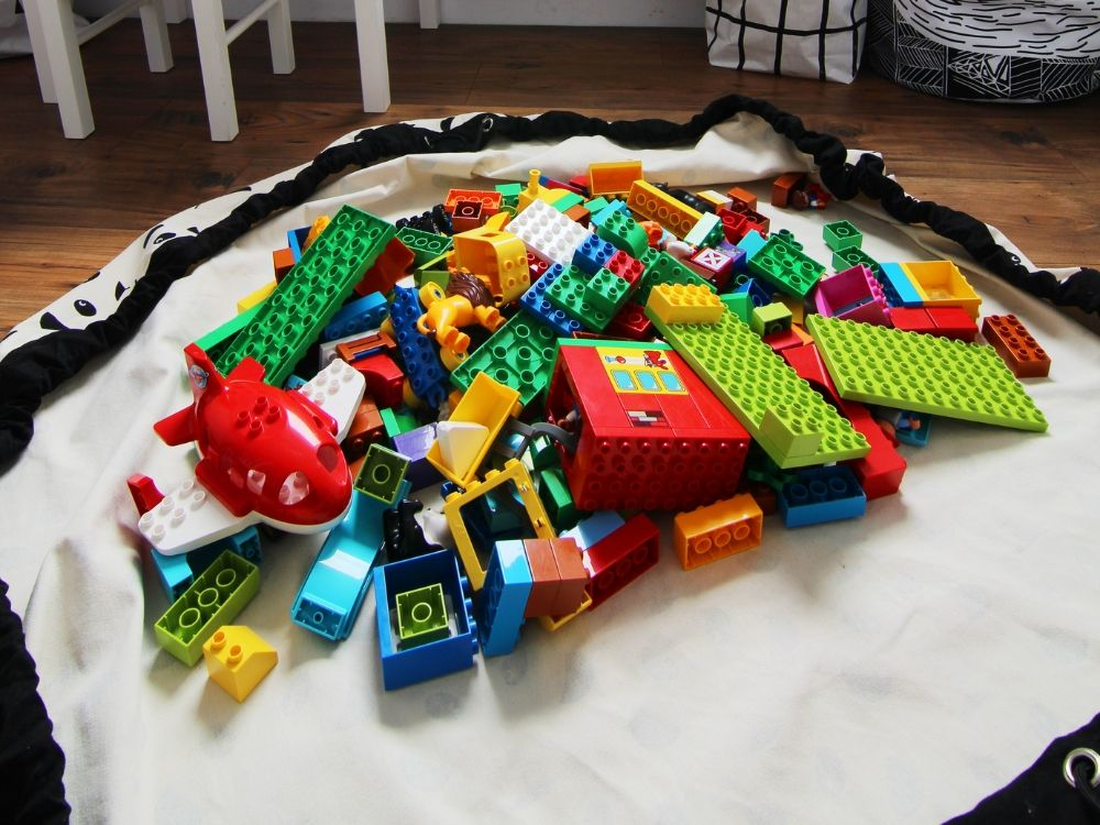 lego organizer container store