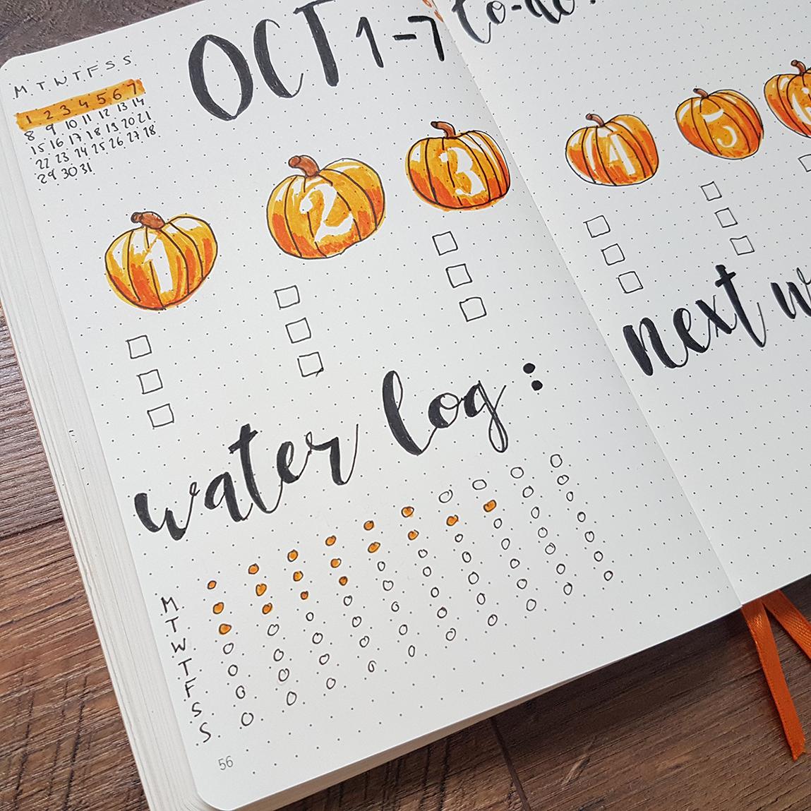 bullet-journal-fitness-tracker-water-log