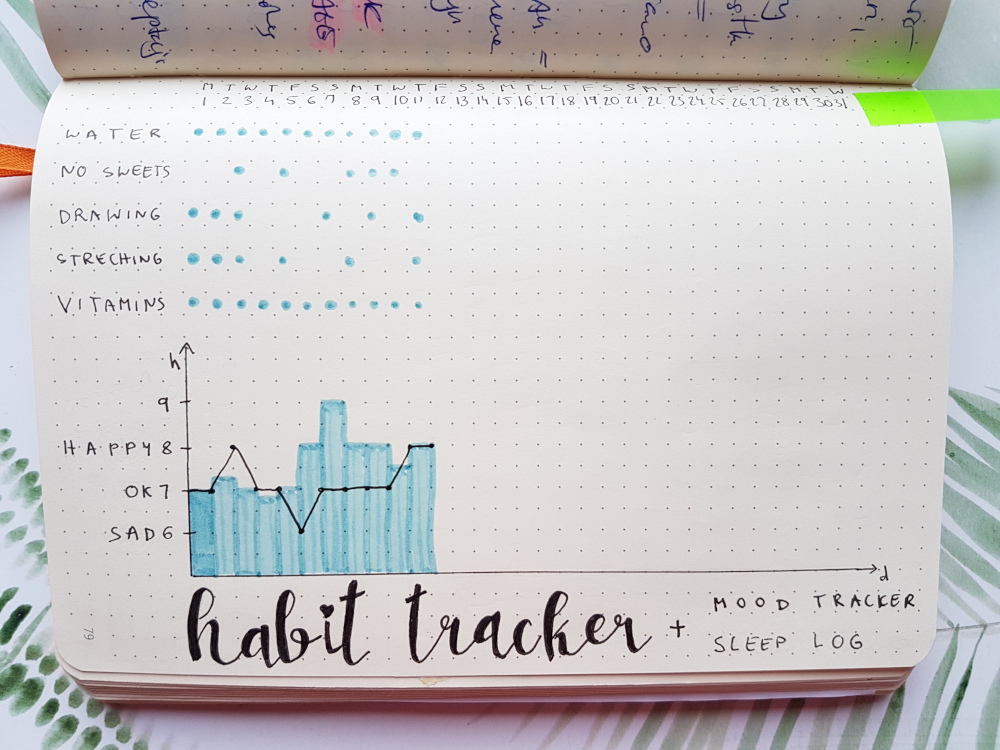 bullet journal graph tracker
