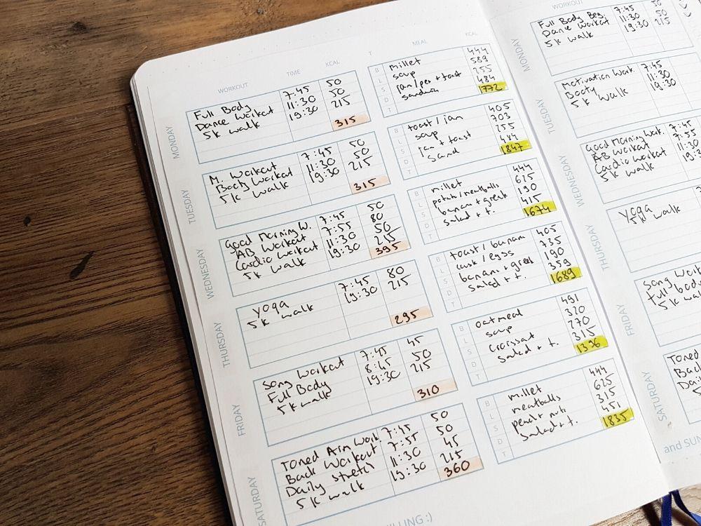 free fitness bullet journal printable